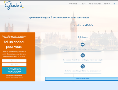 Site web – Ginie's
